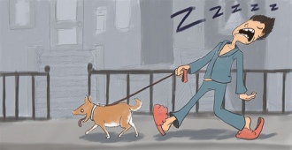 anxiety sleepwalker