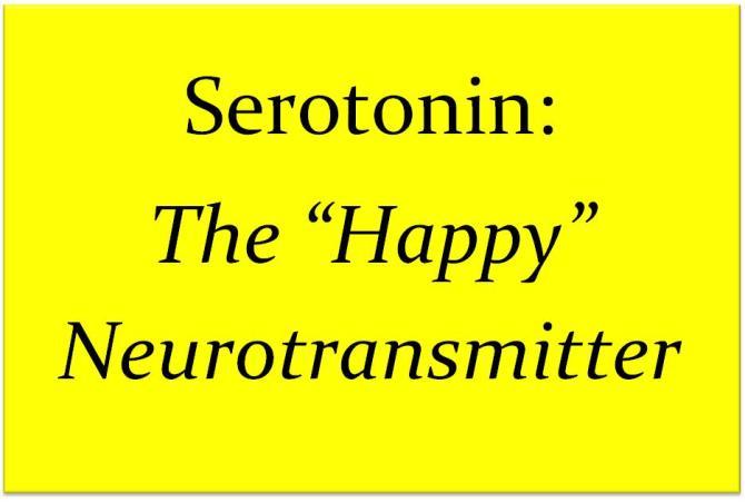 serotonin for anxiety