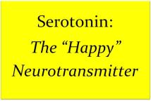 serotonin for anxiety